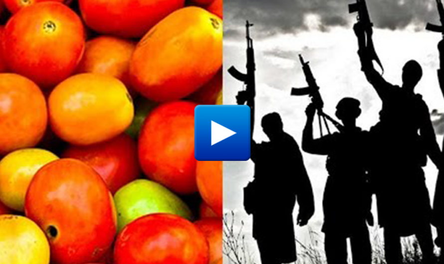 "New Islamic law in Egypt – ""tomatoes are Christian, Muslims are not allowed to eat it"""