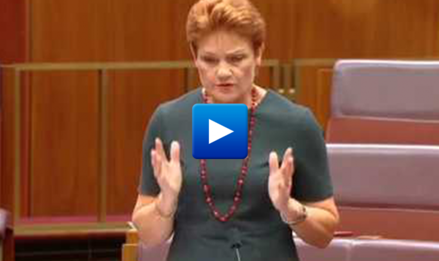 "Watch: Australian senator declares war on political correctness ""The left uses the word 'racist' to silence me"""