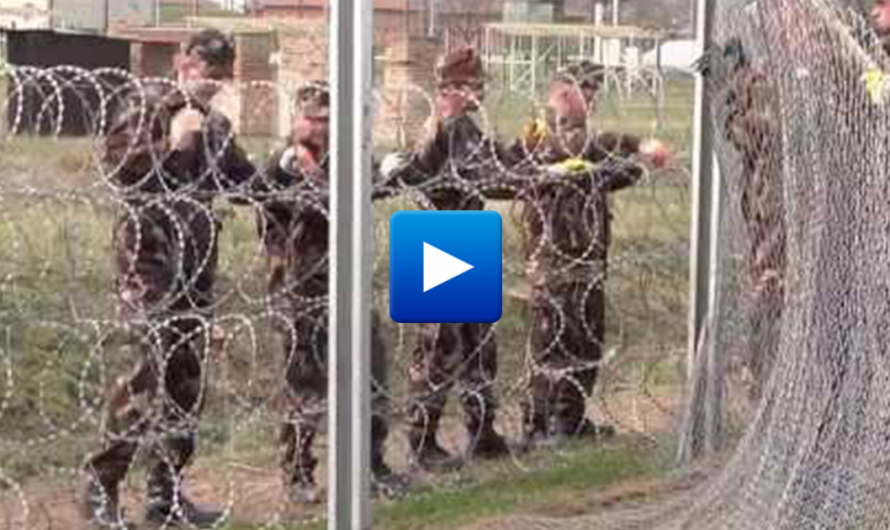 Hungary declares war against illegal Islamic immigration – Hungarian forces patrol the border