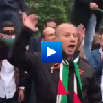 """This is not Gaza, This is Sweden – Muslim immigrants protest against Jews """"apes and pigs"""""""