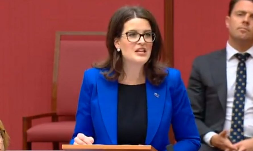 Feel free to disagree, but you have no right to silence anyone – Australian senator's speech went viral