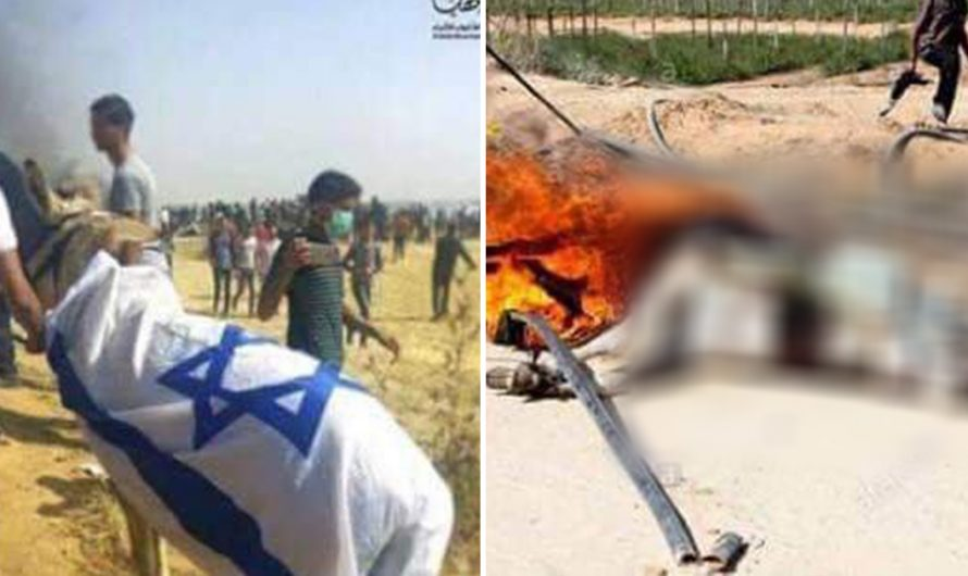 Palestinian Muslims tied an Israeli flag to a donkey, stoned the donkey to death, then burned the body.
